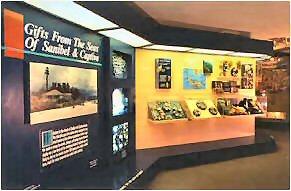 shellmuseum